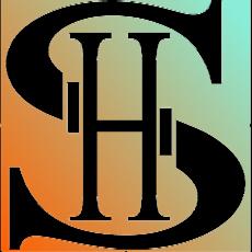 serve hotel, Alexander Stoica-Marcu, Andrei Stoica-Marcu, bell service, servicii hoteliere